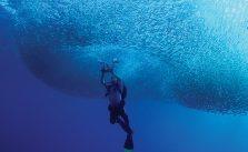 Amatör denizcilerin hayali tropik sularda dalış
