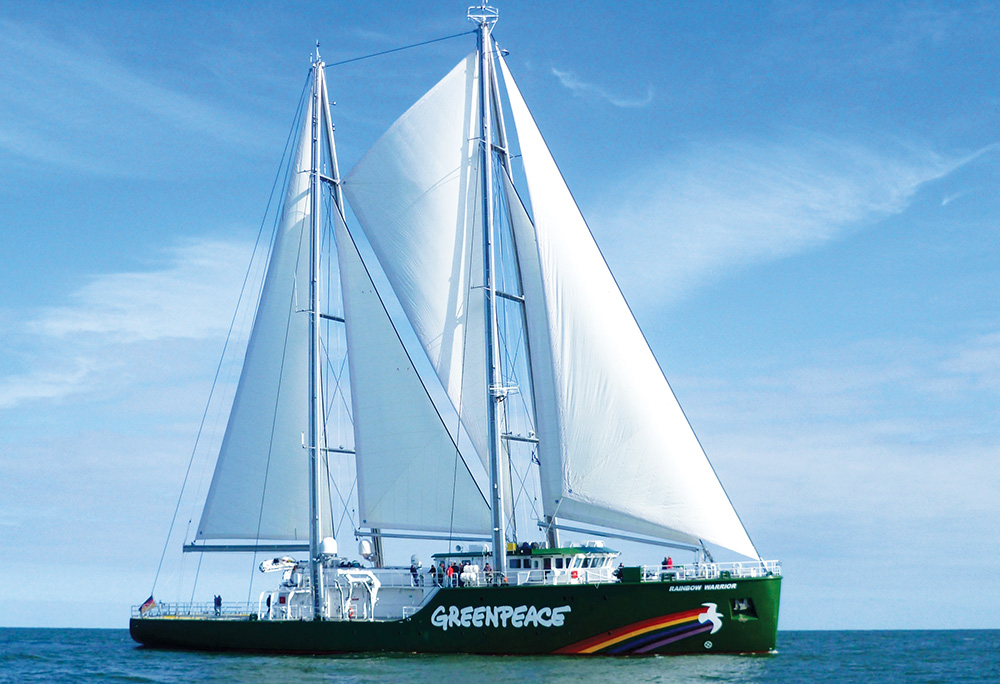 Greenpeace kaptanı Peter Wilcox'un bilinmeyen öyküsü