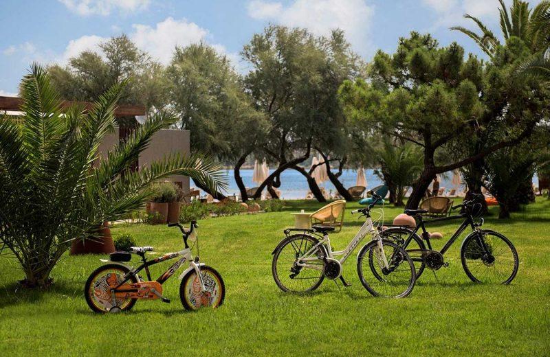 D-Resort Ayvalık'tan çocuklar için doğaya kaçış tatili