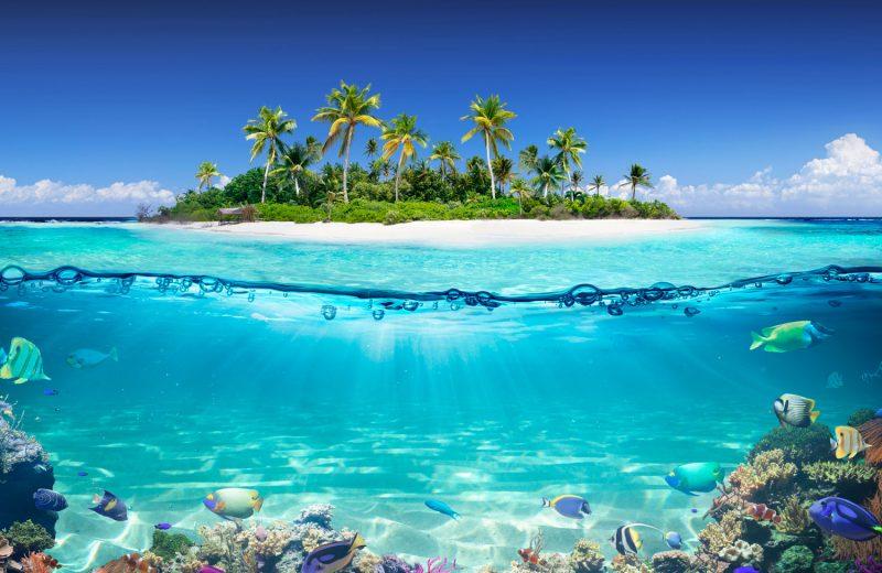 Egzotik ve romantik karayipler gemi turu