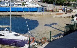 Marmara Denizi'nde deniz salyası problemi