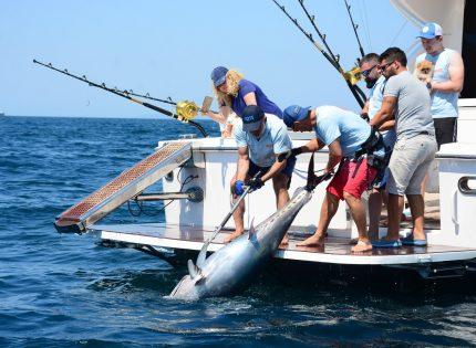 Büyük balık peşinde: MOST ve DOST turnuvaları